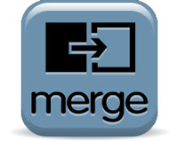 WISEmerge–Merging Duplicate Records or Accounts